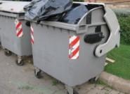Новорожденного ребенка выбросила на мусорник