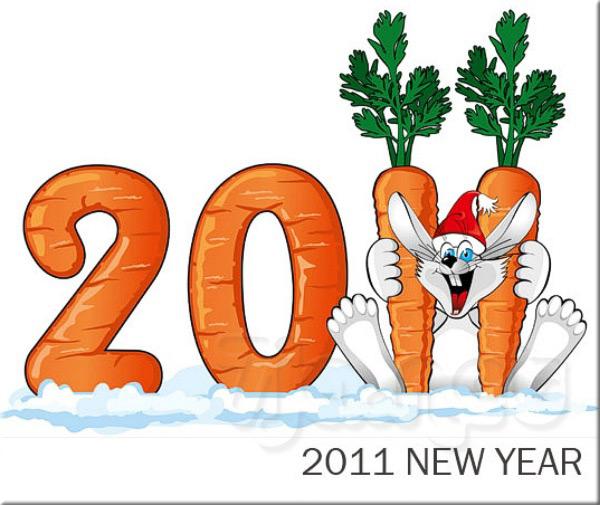 Новый Год 2011