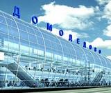 Бомба в Домодедово