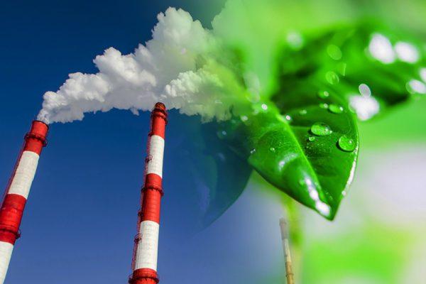 изменить жизнь к лучшему и нормализовать экологическую ситуацию